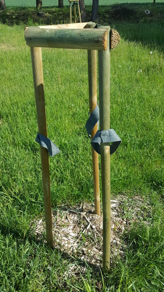 Brak drzewka na terenie nowego parku w Izbicku.jpeg
