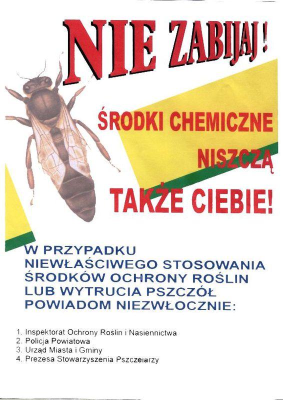 ochrona_pszczol.jpeg